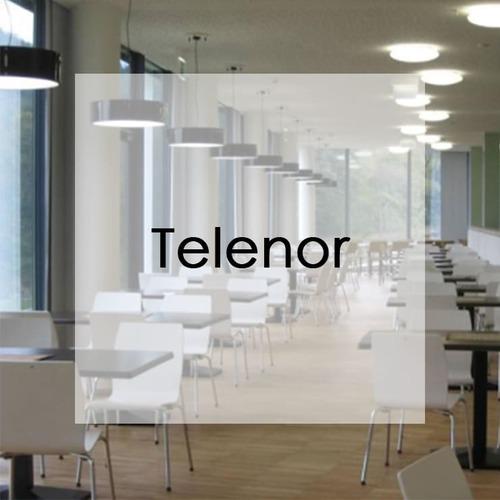 Neudoerfler_irodabutor_referencia_Telenor_ikon 2